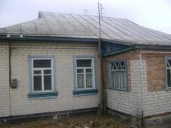 Дом в селе Мошны Черкасский район