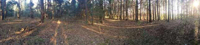 Land for sale in Vasylkiv