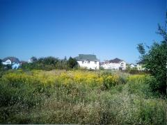 Plot in Kiev region for residential construction. (Vasilkovsk